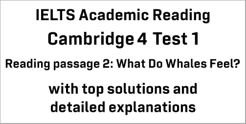 IELTS Academic Reading: Cambridge 4 Test 1 Reading passage 2; What Do Whales Feel?; with best solutions and best explanations