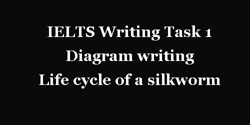 IELTS Writing Task 1: Diagram, life cycle of a silkworm moth